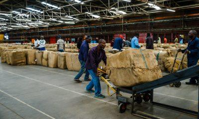 zimbabwe workers