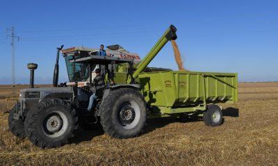 Tunisia reassures farmers over EU trade deal