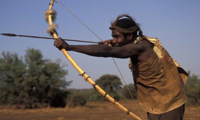 New hunting rules allow use of bows and arrows in Zimbabwe