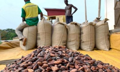 Cocoa buyers agree to Ghana, Ivory Coast proposed price