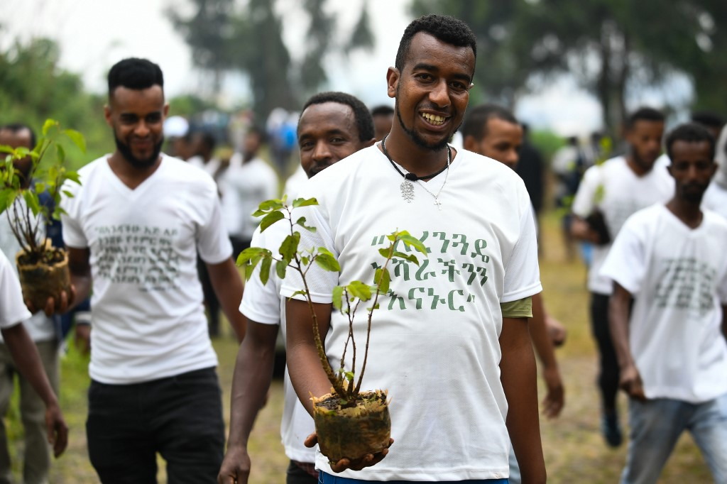 Ethiopia's Green Legacy Initiative goes big on tree planting