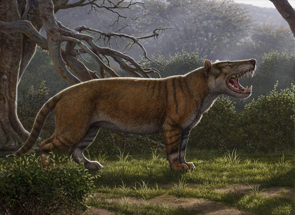 Reconstruction image shows a Simbakubwa kutokaafrika