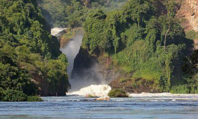 Uganda dumps planned hydro project construction near Murchison Falls