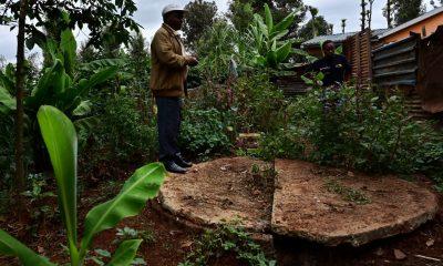 Poo Power: How dung biodigester is supercharging farming in Kenya
