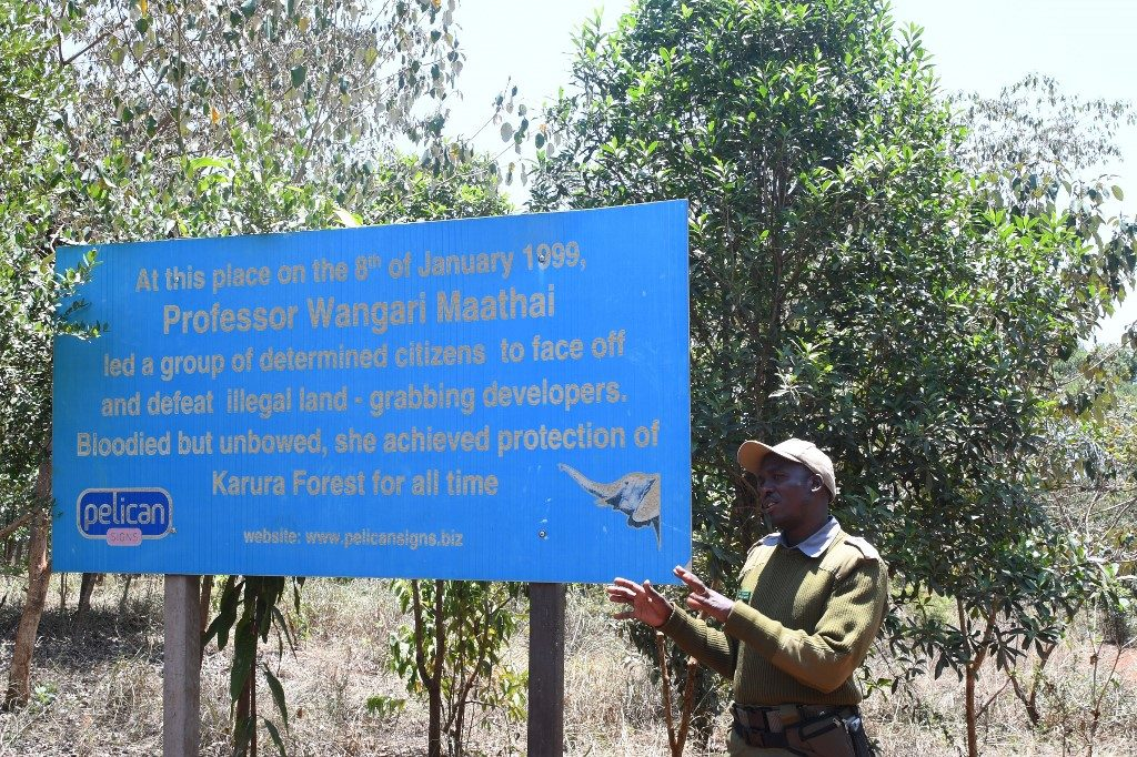 John Chege, chief scout, speaking during an interview in Karura forest. (Photo by SIMON MAINA / AFP)