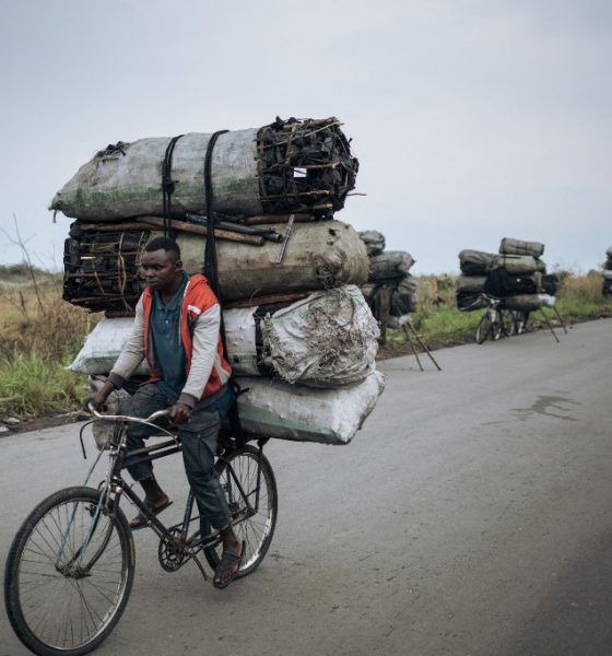 DR Congo rainforest attacked on all sides
