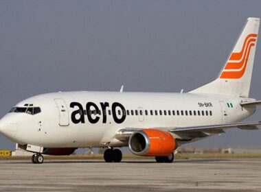 Aero Aircraft Makes Air Return Owing to Bird Strike