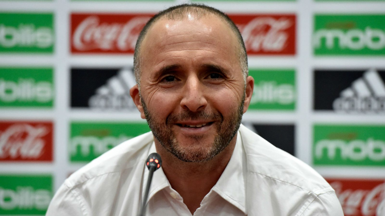 Belmadi has signed a new deal