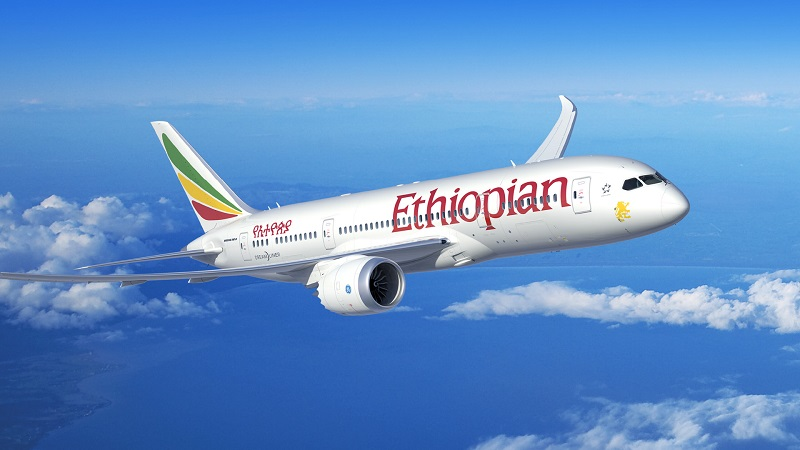 Ethiopia's Finance Ministry suspends the proposed Airline privatisation